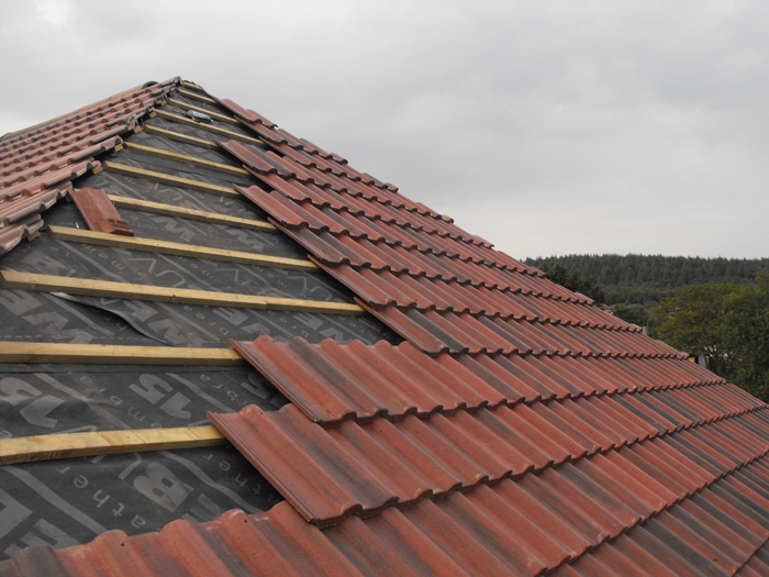 Roof during construction